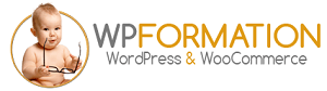 LOGO-WP-FORMATION-300