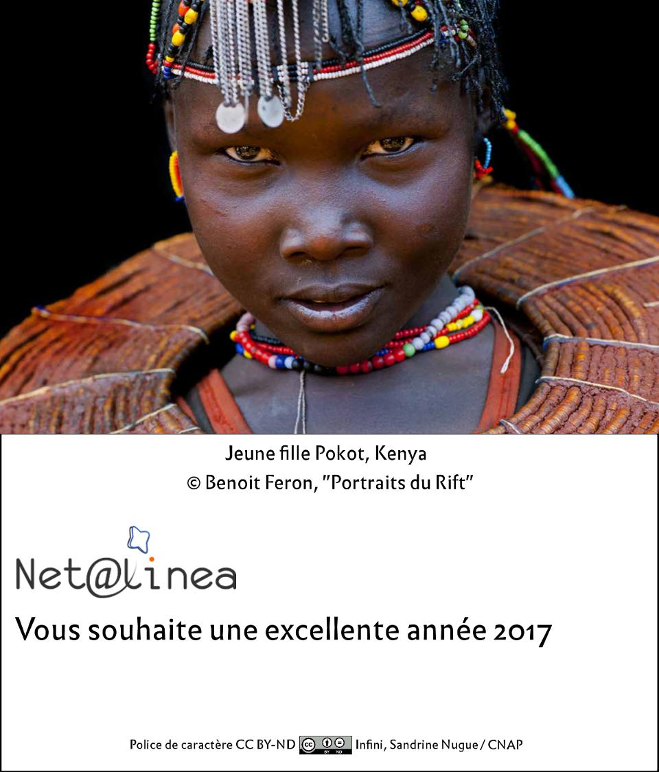 Voeux 2017 Netalinea
